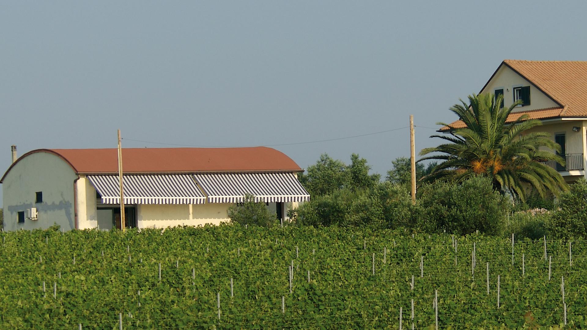 cropped-Azienda.jpg